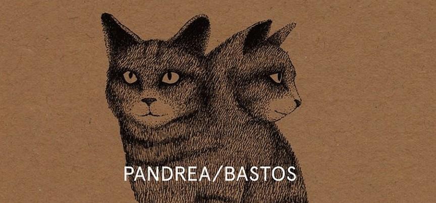 pandreabastos