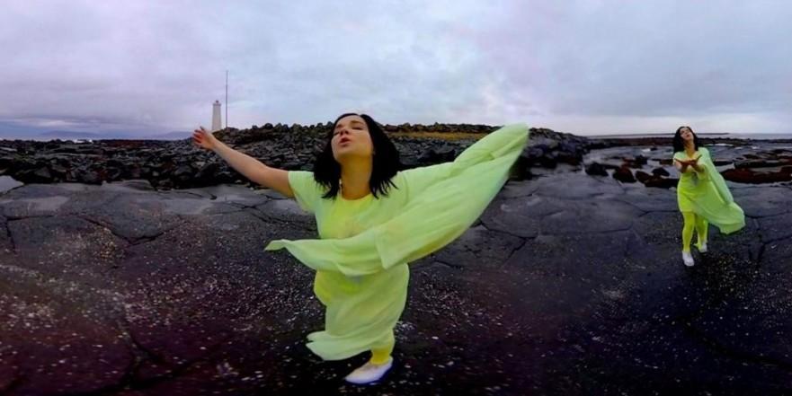 Björk stonemilker